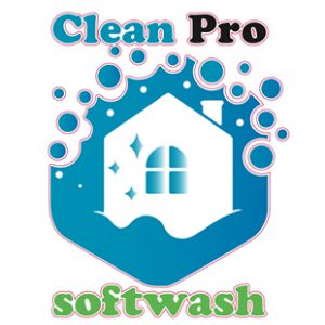 Clean Pro Softwash